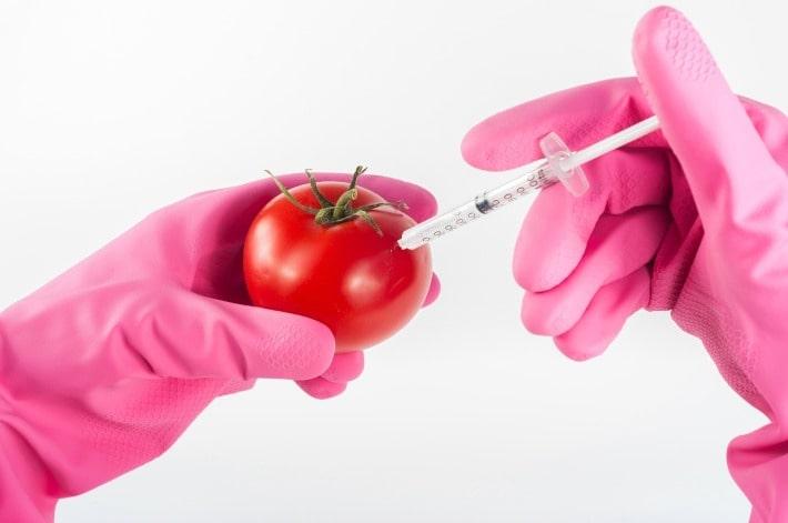 yang dipelajari di jurusan teknologi pangan
